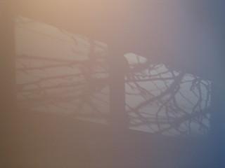 Weird_ceiling_shadows_1130_004